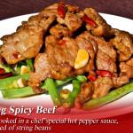 yuen-yang spicy beef